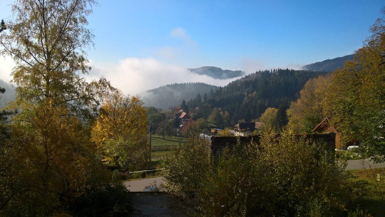 18-1103 Schwandland Fensterblick