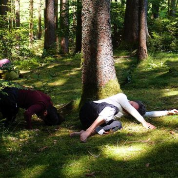 Danse Sensible im Wald des Kleinen Wiesentals