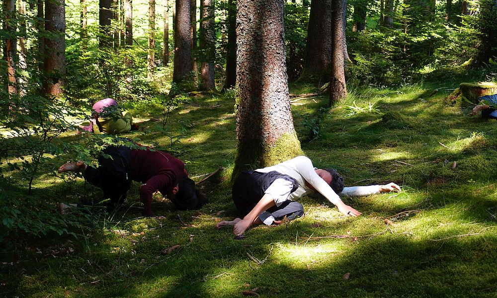 Danse Sensible im Wald