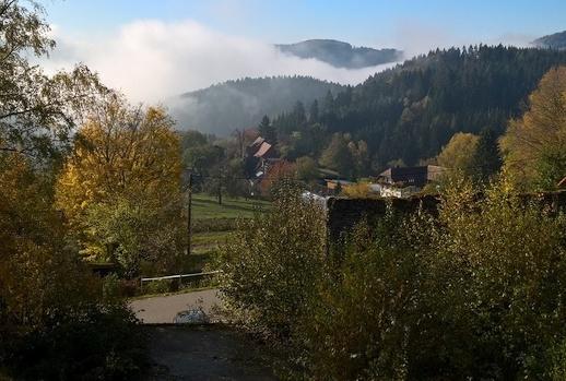 18-1103 Schwandland Fensterblick klein